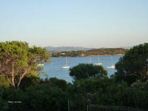 Korsika36