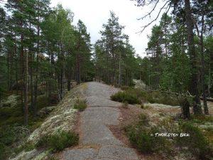 Schweden32